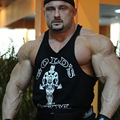 Gimnasios de Stringer culturismo Tank Tops Muscle Tank Tops Autónomo Culturismo Ropa de Deporte de Algodón Racerback Sin Mangas Camisetas