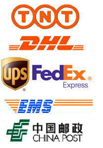 Shipping Fee by UPS ,Fedex ,DHL,TNT