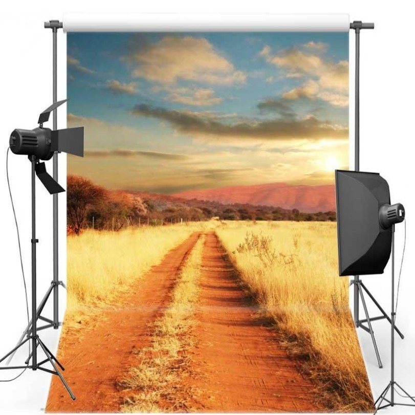 Sunset Blue Sky White Clouds Cornfield Photography Backgrounds Vinyl cloth High quality Computer print wall backdrop