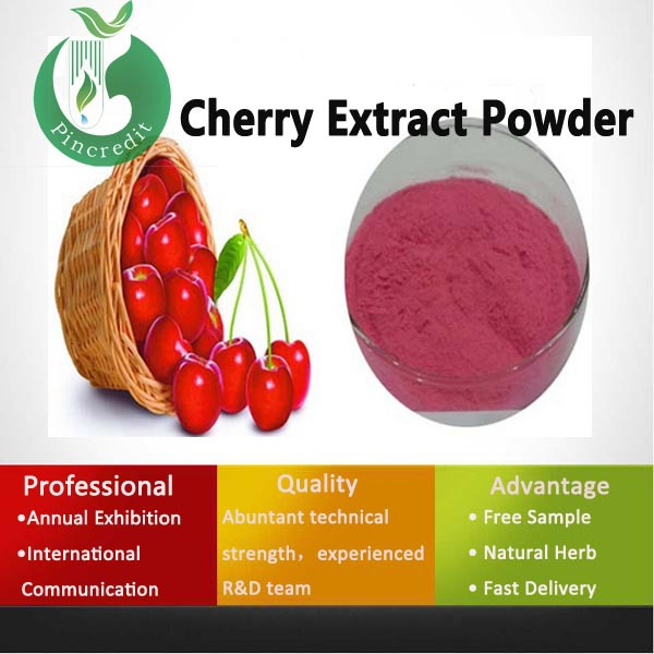 2015 Promotion Fruit Powder Cherry Fruit Extract Powder Fruit Powder