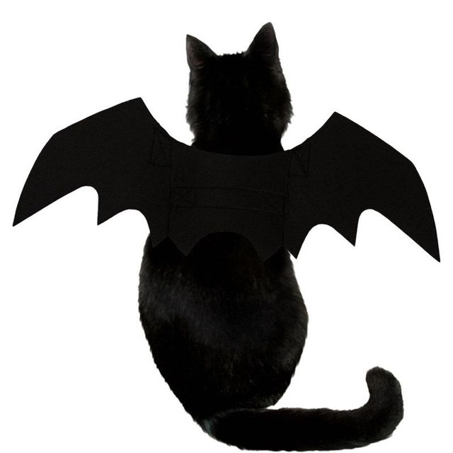 Funny Cats Cosplay Costume Pet Bat Wings Cat Fit Party Dogs Playing