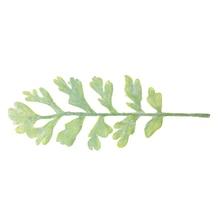 50pcs/lot 70*191mm Faux Branch Leaf with Stem DIY Handmade Decor Accessory Supply instock MOMLOVEDIY