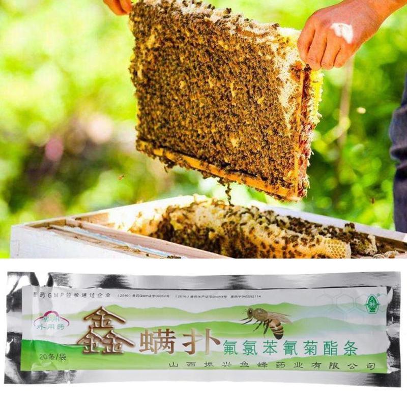 20Pcs Bee Mite Killer Treatment Tools Pack Varroa Strips Beekeeping Pest Control