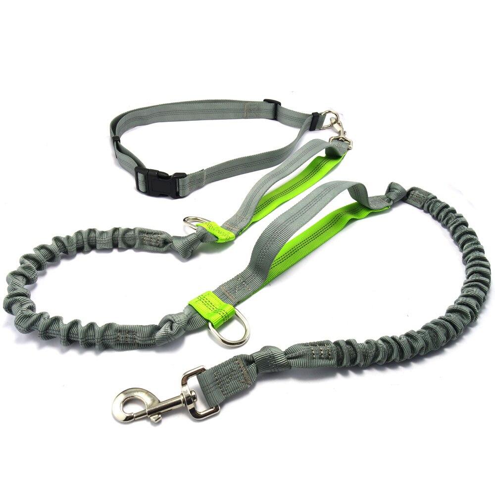 Laisse de chien mains libres, laisse de chien de course Premium, laisse de chien élastique réfléchissante légère pour la course, le Jogging ou la marche