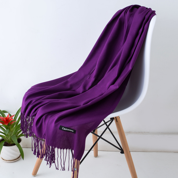 HTB1EnTSXzDuK1RjSszdq6xGLpXaN - Women solid color cashmere scarves with tassel lady winter autumn long scarf high quality female shawl hot sale men scarf