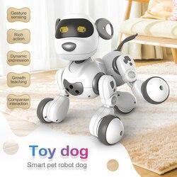 2,4 ГГц пульт дистанционного управления Интеллектуальный робот-игрушка для собак умный говорящий робот интерактивные игрушки для щенков эл...