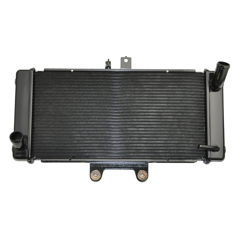 Motorcycle Aluminium Radiator For SUZUKI Bandit GSF1250S GSF1250 2007 2008 2009 GSF 1250 07-09