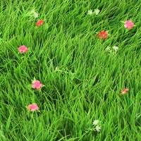 Atacado plástico sintético gramado simulação relvado artificial com flor grama esteira boxwood para jardim|Gramado artificial|Casa e Jardim -