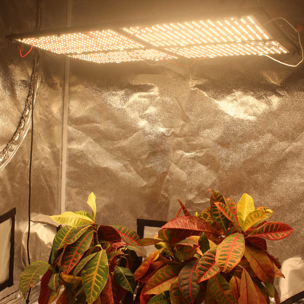 Figolite grow Quantum Board led grow light 4xQB288 LM301B