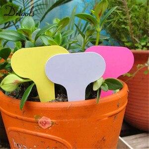 Image 4 - 100pcs pack אקראי צבע פלסטיק צמח תוויות זרעי פוט דה מרקר משתלת גן תגיות Stake חמוד גן תוויות GT019