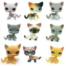 Lps Pet Shop Lovely Äkta Pet Collection Leksaker Animal Cartoon Cat Action Figur Barn presenttyper