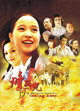 《烽火孤儿》2007年中国大陆剧情电视剧在线观看