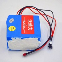 36V/48V Lithium battery 36V 10AH Electric Bike/ebike battery 48V 10ah 500W Scooter Battery with 36v/48v 2A charger