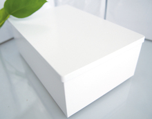 195X130X69mm New Arrival Rectangle  big white sundries storage box biscuit case organizer trinket tin with hinge 12pcs/lot