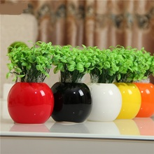 Modern fashion vase creative ornaments simple ceramic crafts bonsai potted round vase with flowers inserted