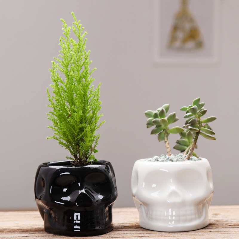 Black White Skull Ceramic Flower Pots Creative Succulent Flower Planter Eco-friendly Design Flower Pot Home Garden Pot