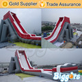 Free Shipping By Sea Inflatable Giant Kids And Adult Beach Water Slide For Sale