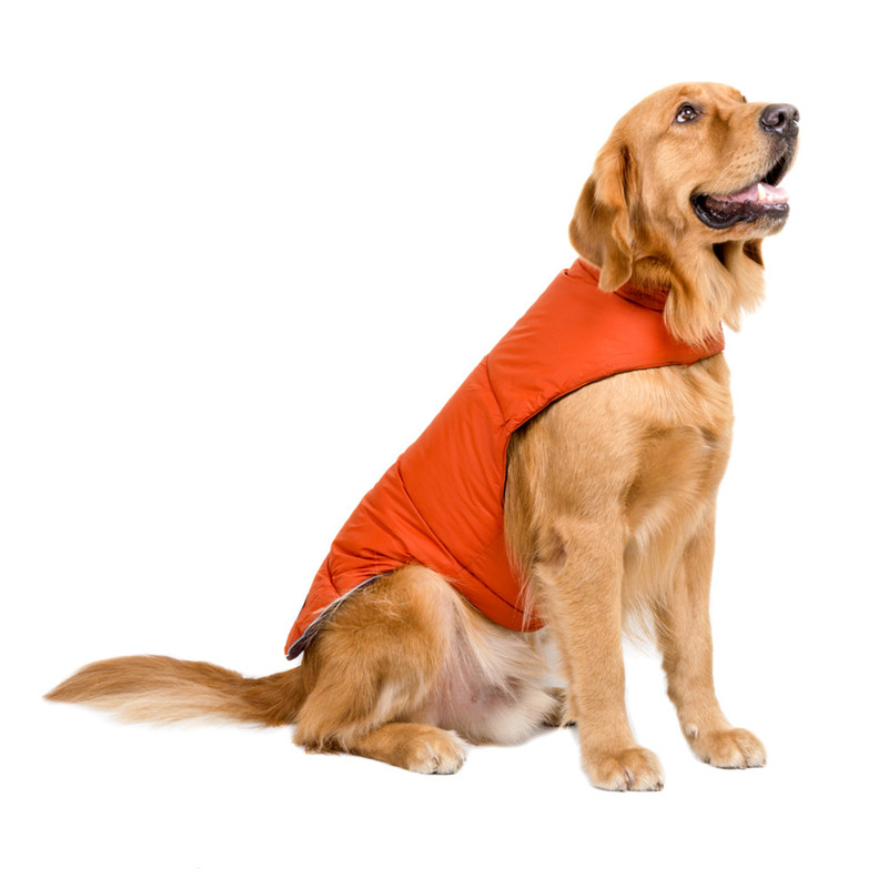 Dog Clothes for Large Dogs (16)