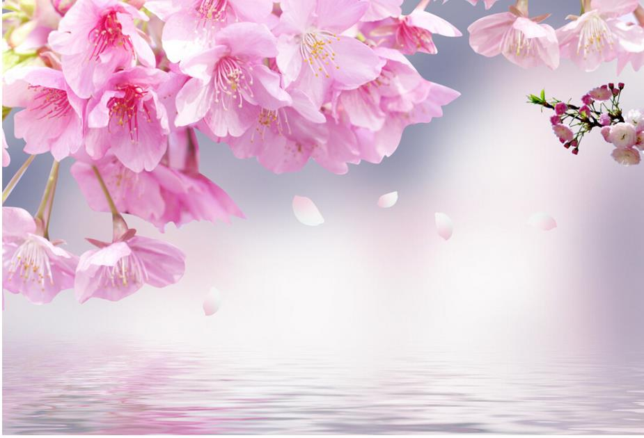 Pink cherry blossoms 3d wallpaper flower 3d wallpaper for Cherry blossom wallpaper mural