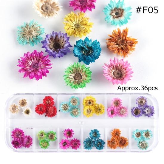 Сухоцветы лист ногтей украшения натуральный наклейка в виде цветка 3D сухой для маникюра ногтей наклейки ювелирные изделия УФ Гель-лак Маникюр TRFL-1 - Цвет: F05