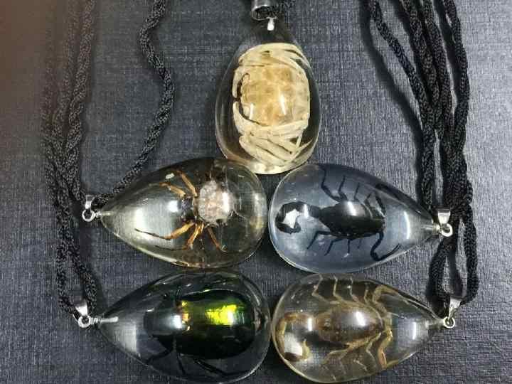 En gros livraison gratuite 10 pièces yqtdmy vrai scorpion araignée crabe vert scarabée pendentif arrière lucide