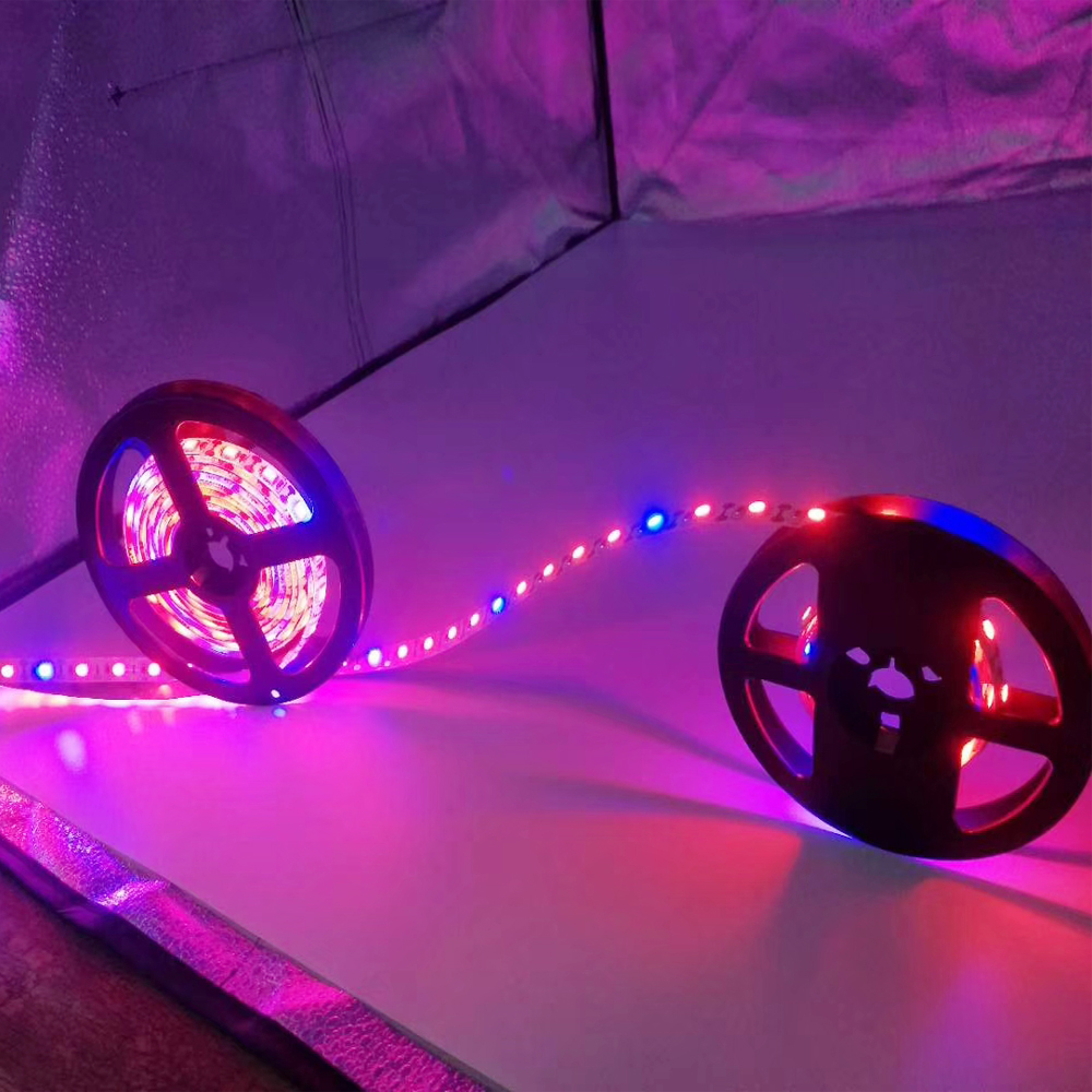 Image 5 - LED Grow Light Full Spectrum USB LED Strip red blue 5050 60LED Phyto Lamps For indoor flower seed Hydroponic Plant Growing lamp-in LED Grow Lights from Lights & Lighting