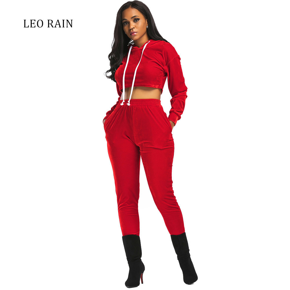 2017 Autumn And Winter New Solid Hooded Top Long Sleeve Two Piece Set Velour Women Suits Womens Velvet Tracksuits LEORAIN
