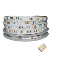 Grnflashing NEW product SMD5050 RGBCW WW 5 In 1 LED strip DC12v 24v dream Flexible LED strip no waterproof for indoor decoration