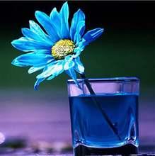 5d diy Алмазная вышивка синие цветы крестиком Полный алмаз алмазная