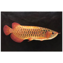 100% Hand painted Golden realistic arowana Art oil Painting On Canvas Wall Pictures For Live Room Home Decor