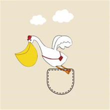 Clothes printed patch deal with it Flying swan pocket pattern Heat transfer  printing Iron on patches c022f9e1a95b