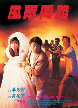 《风雨同路》1990年香港动作电影在线观看