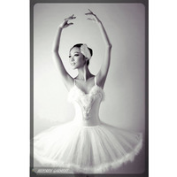 Free Shipping Professional Custom Made Tutu Dance Costume With Feather, Adult Girls Ballet Dresses, Classical Ballet Tutu HB259
