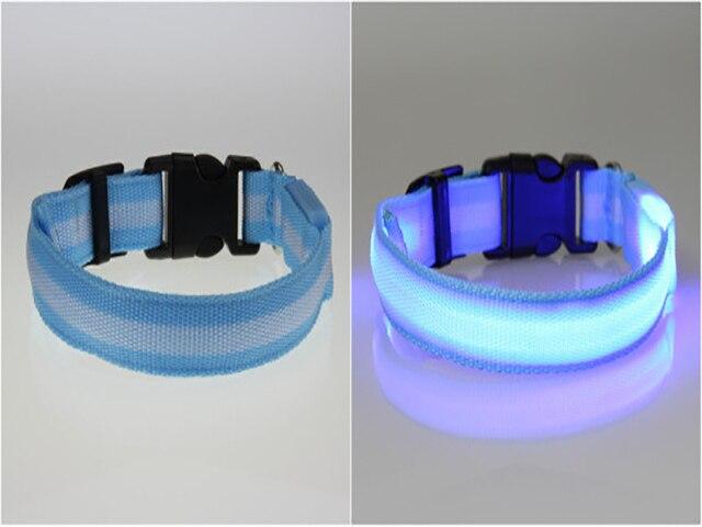 Pet Cat Dog Glow LED Collar Flashing Light Up Nylon Night Safety