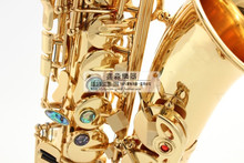 Alto Saxophone instrument SAX high musical instrument Saxophone Sax top golden brass musical instrument.