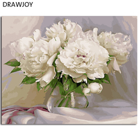 Modern Flower Framless Picture DIY Acrylic Oil Painting By Numbers Wall Art DIY Canvas Oil Painting