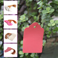 100pcs Waterproof Strip Line Gardening Labels Signs Plant Hanging Tags Gray/Pink
