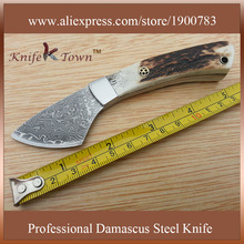 DT033 2016 new damascus steel knife antler handle camping knife fixed blade hunting knife leather cutting knife