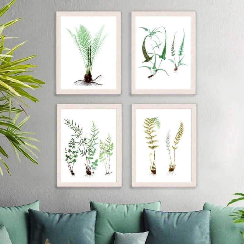 Watercolor Ferns Green Plants Leaf