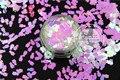 TCI03 Serio O Rosa Claro Blanco Nacarado Colores Pingüino forma Glitter 5.0 MM Tamaño Del Brillo para el Arte del clavo gel de uñas maquillaje