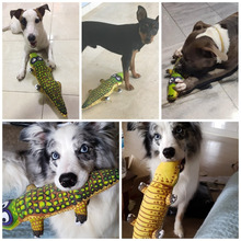 Various Funny Cat toy durable pet dog Bite toy  dog toy for small and large dogs dog trainging chew toys puppy canvas  sque