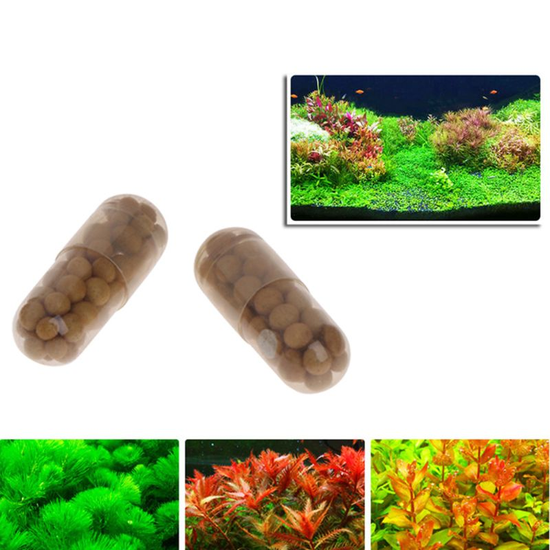 40 Pcs Aquatic Plant Water Root Fertilizer Condensed Aquarium Fish Tank Cylinder