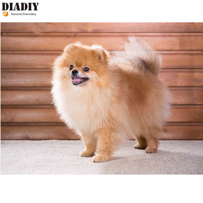 DIADIY DIY diamond Embroidery Pomeranian Dog 5D diamond painting of Cross stitch kit for living room Needlework set embroidery