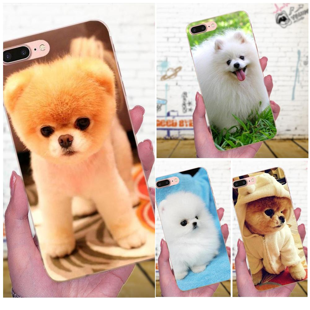 Pomeranian <font><b>Dog</b></font> <font><b>Dogs</b></font> Soft TPU Cover For <font><b>Galaxy</b></font> <font><b>A3</b></font> A5 A7 On5 On7 2015 2016 <font><b>2017</b></font> Grand Alpha G850 Core2 Prime S2 I9082 image