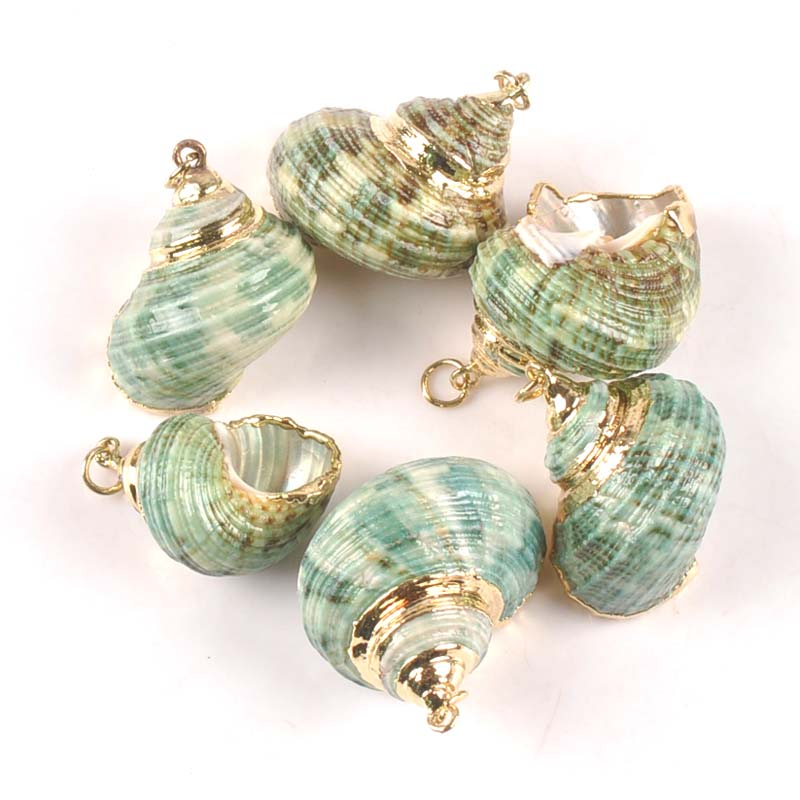 Natural Green Spiral Shell Gold Plated For Jewelry DIY Handmade Charms Pendant SeaShells Home Decoration 20-30mm 5pcs TRS0300