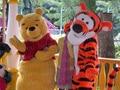 New Tiger tigger mascot costume winnie bear pa color fancy party dress suit carnival costume fursuit business sport mascot