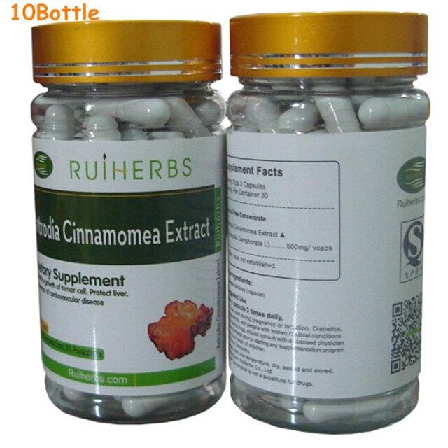 10 Бутылки Antrodia Camphorata Экстракт 30% Полисахарид 500 мг х 900 Капсулы бесплатная доставка