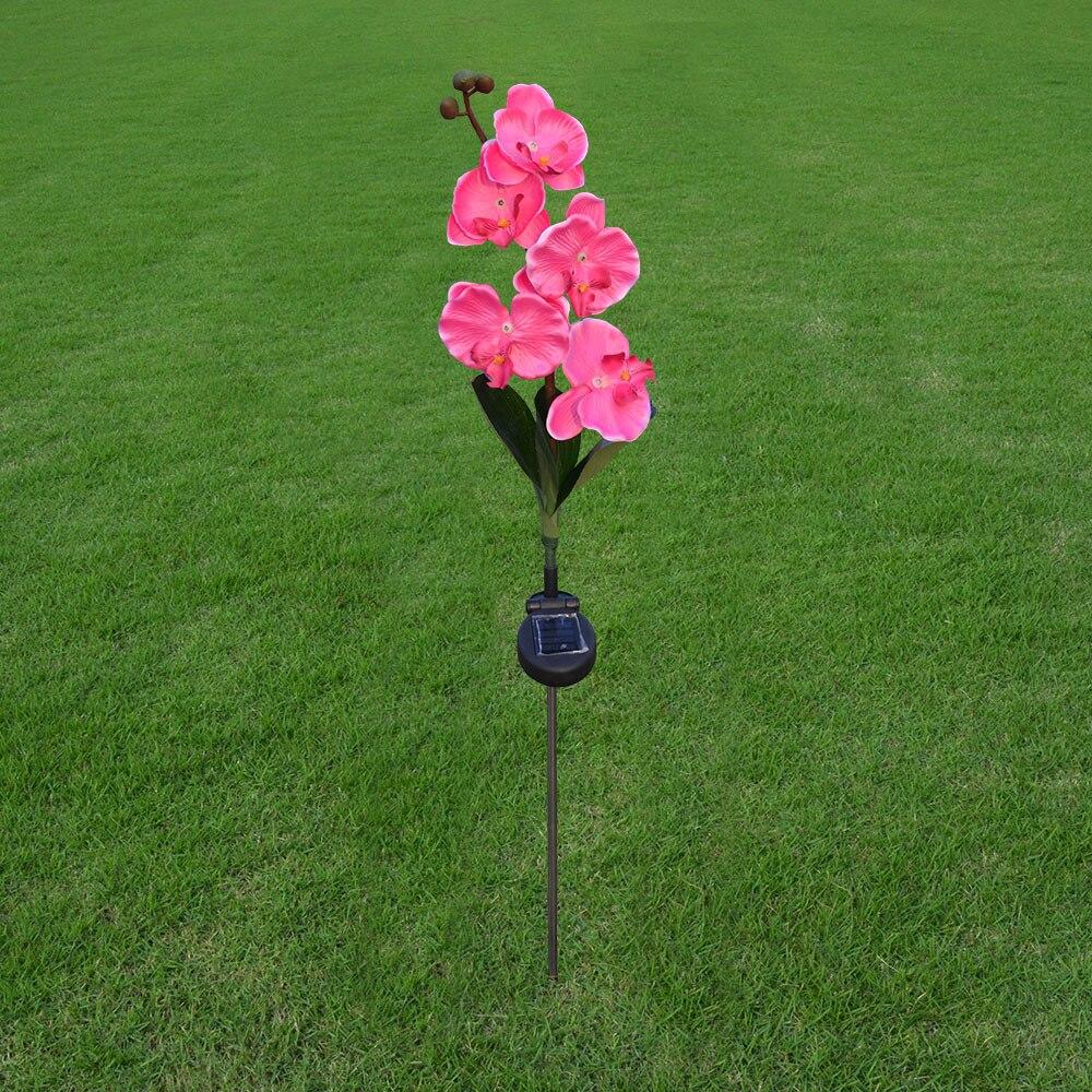 solar butterfly orchid LED lantern outdoor simulation lantern garden ...