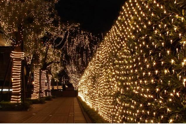 220 V Çok Renkli 200 LEDs 2 M * 3 cm LED Net Dize Noel Cristmas - Şenlikli Aydınlatma - Fotoğraf 3