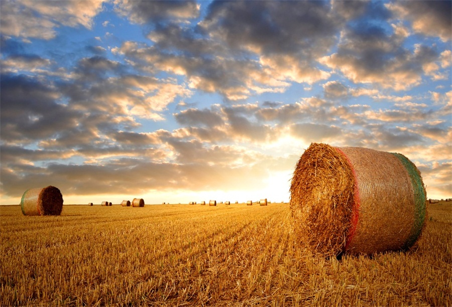 straw bales sunset sky country farm Photography Backdrop Photo Background Quality Vinyl
